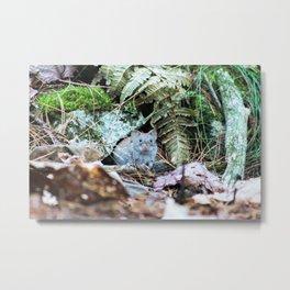 Hidden Home  Metal Print