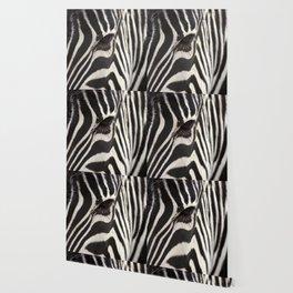 Zebra Eye Wallpaper