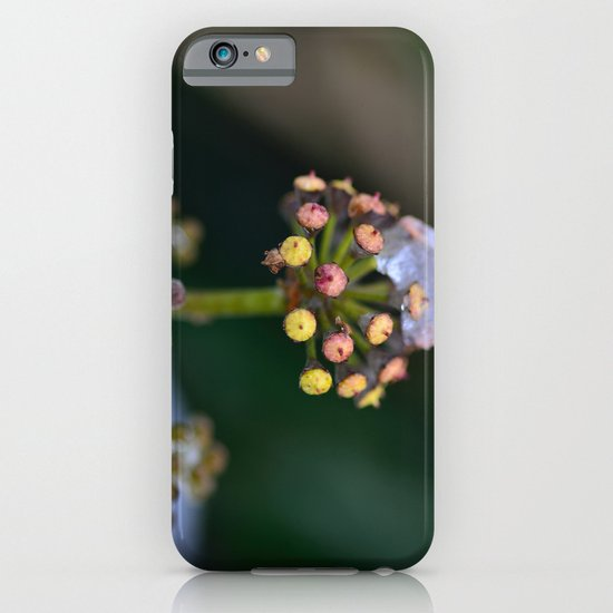 Wild Ivy iPhone & iPod Case