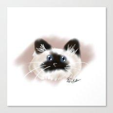 Crazy Siamese Canvas Print