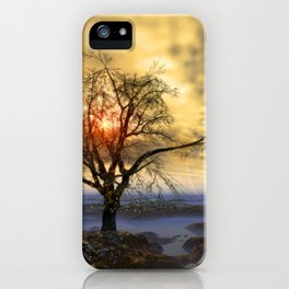 Tree in November sun iPhone Case
