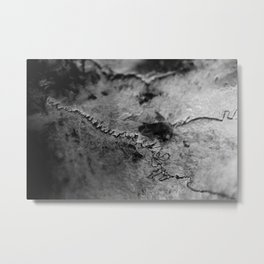 Sutures On The Cow Skull Metal Print