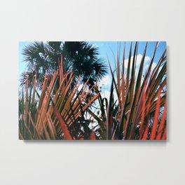 Jungle Soft 33 Metal Print
