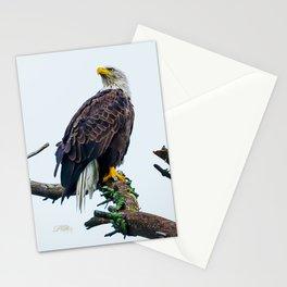 Bemidji Eagle I Stationery Cards