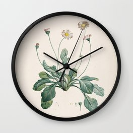 Daisy Flower Botanical Illustration Wall Clock