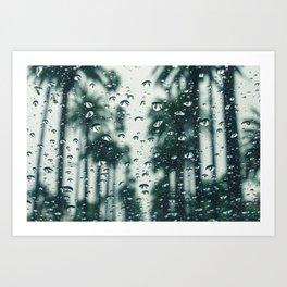 Palm Trees Background Blur  Art Print