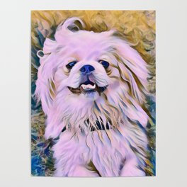 pekingese at the park Poster