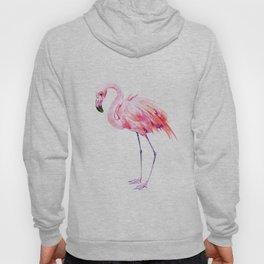 Flamingo pink flamingo design decor flamingo lover artwork Hoody