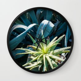 Aloe & Agave Wall Clock