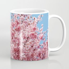 Plum Blossoms Japanese Ume Tree in Early Spring Photography Coffee Mug