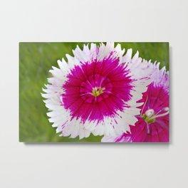Garden Flora Metal Print