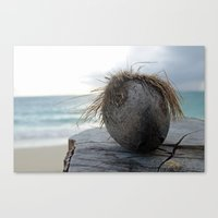 coconut wishes Canvas Prints featuring Coconut by Devin Jones Photography