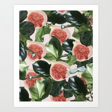 Figs & Leaves #society6 #decor #buyart Art Print