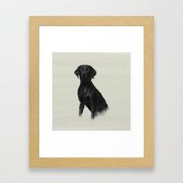 Trixi the Lab Framed Art Print