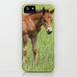 Little Colt iPhone Case