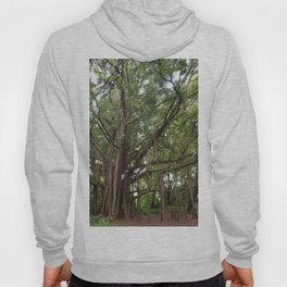 Banyan Beauty Hoody