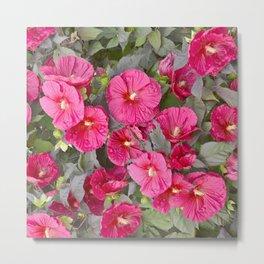RED-PINK HIBISCUS FLOWERS GARDEN ART Metal Print