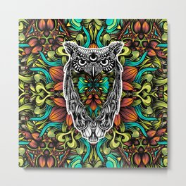 Owl color Metal Print