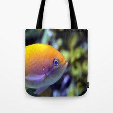 Hey fish!  Tote Bag