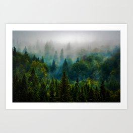 forest redone Art Print