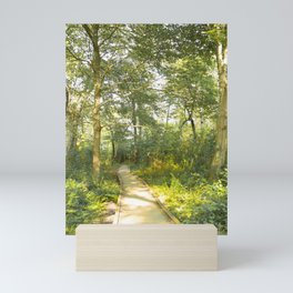 Woodland Path Mini Art Print