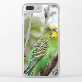Sweet BUDGIE Clear iPhone Case