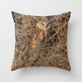 THE OLD BARN OWL Throw Pillow