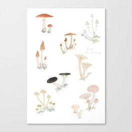 Sketchbook Mushrooms Canvas Print