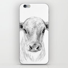 Moo ::  A Young Jersey Cow iPhone Skin