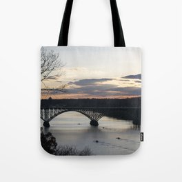 Boat House Row, Schuylkill River, PA Tote Bag