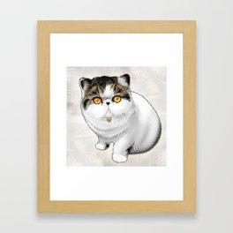 Arizona Ricecakes Framed Art Print
