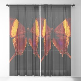 Butterfly - Vibrant Glow - Orange Brown Yellow Black Sheer Curtain