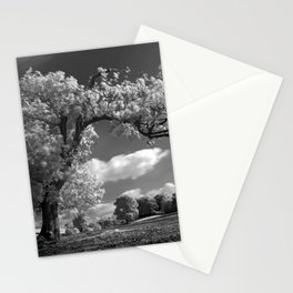 A Tree Blows in the Wind Stationery Cards