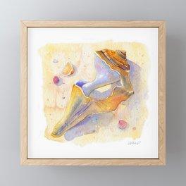 Old Shell Watercolor Framed Mini Art Print