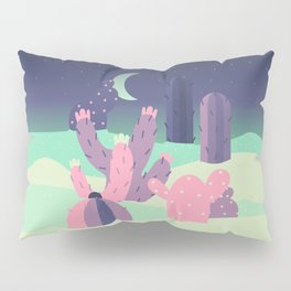 Pocket Desert Pillow Sham