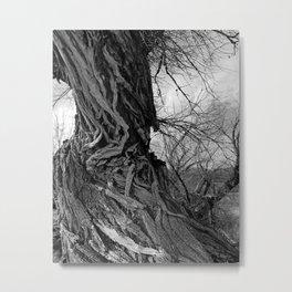 Tangled Up Metal Print