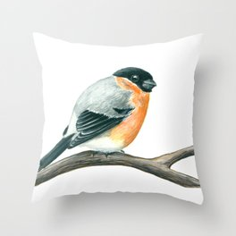 Bullfinch bird Throw Pillow