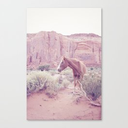 Monument Valley III Canvas Print