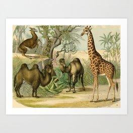Giraffe and Friends Art Print
