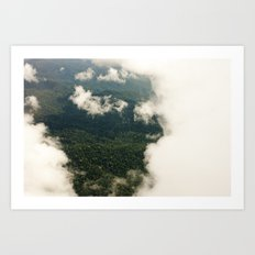the rainforest  Art Print