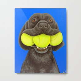 Black Lab with Tennis Balls Metal Print
