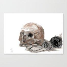 old sage's skull Canvas Print
