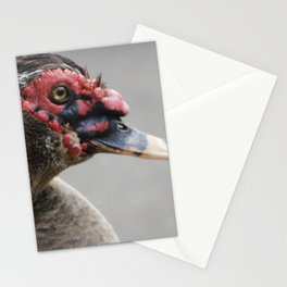 ugly muscovy duck Stationery Cards