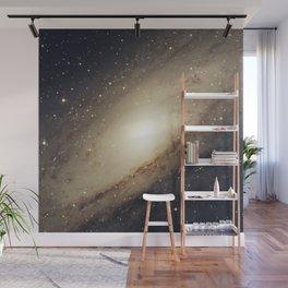 Andromeda Galaxy Wall Mural