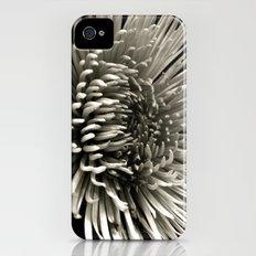 Chrysanthemum iPhone (4, 4s) Slim Case