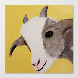 Original Painting - Farm Friends - Baby Goat Canvas Print