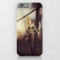 Raspberry sprout iPhone 6s Slim Case