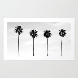 Palm Tree Noir #72 Art Print