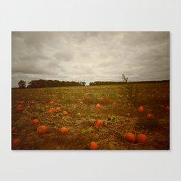 Pumpkin Field at Lewin Farms Canvas Print