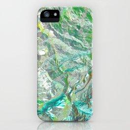 Chameleon rock iPhone Case